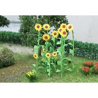 Railway Scenery 00676 - Sunflowers