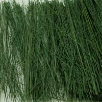 Railway Scenery 00894 - Field Grass Dark Green